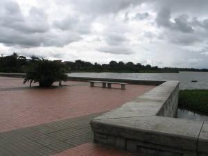 Juan Amarillo Wetlands