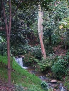 Alameda de la Quebrada de la Vieja